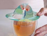 Parrots Steam Waverz